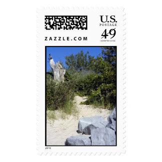 Nature's Path Stamp
