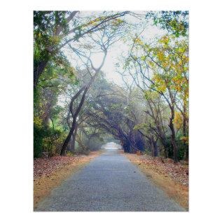 Natures Path Poster at Zazzle