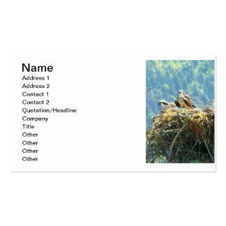 Nature's Pride Nesting Hawks Business Card