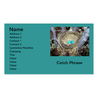 Nature's Pride Nesting Robin Blue Eggs Realty Busi Business Card Templates