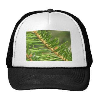 Natures Serenity Hats