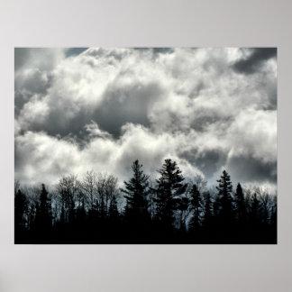 Nature's Silhouette Print