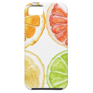 Nature's Sour Sweet Jewels iPhone SE/5/5s Case