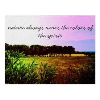 natures spirit postcard