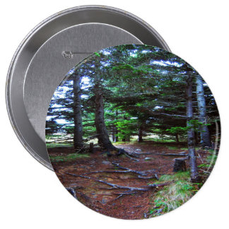 Nature's Stairway Button