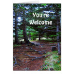 Nature's Stairway Greeting Card
