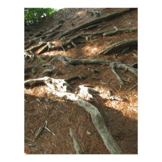 Natures Strength Letterhead