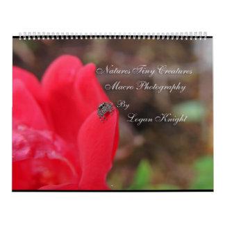 Natures Tiny Creatures Macro Photography Calendar