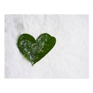 Nature's Winter Snow Romantic Heart of Love Postcard