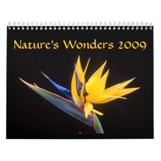 Nature's Wonders 2009 Calendar