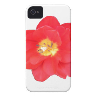Natures's Beauty II iPhone 4 Cover