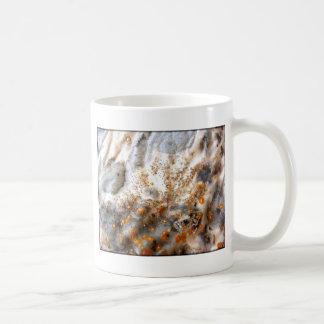 Naturhaut Taza De Café