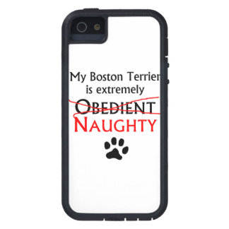 Naughty Boston Terrier iPhone 5 Cases