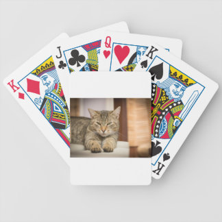 Naughty Cat Bicycle Playing Cards