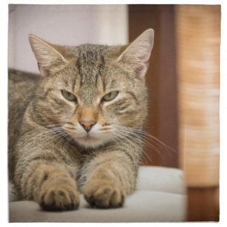 Naughty Cat Cloth Napkin