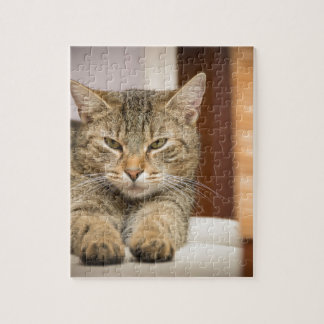 Naughty Cat Jigsaw Puzzle