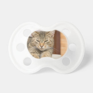 Naughty Cat Pacifier