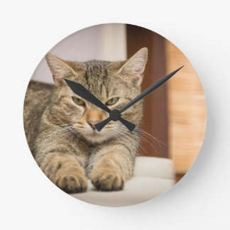 Naughty Cat Round Clock