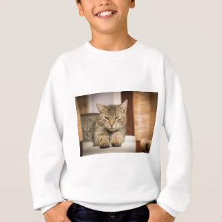 Naughty Cat Sweatshirt