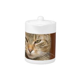 Naughty Cat Teapot