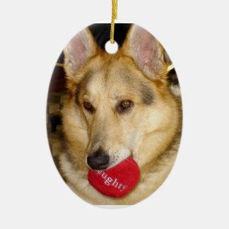 Naughty Dog Ornament