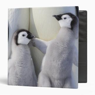 Naughty Emperor Penguin Chick 3 Ring Binder