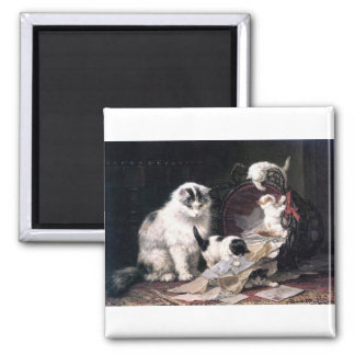 Naughty kittens cats playing with basket adorable magnet