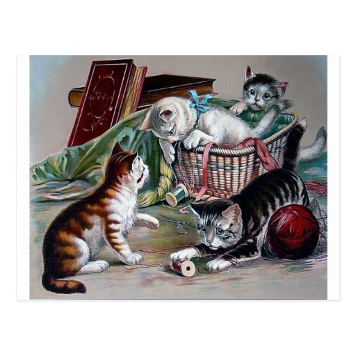 naughty kittens cats playing with yarn antique art post card