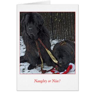 Naughty or Nice? Card