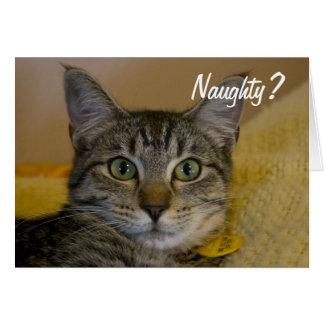 Naughty or Nice Cat Card
