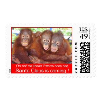 Naughty or Nice Christmas Sweet Wildlife Stamps