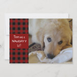 """Naughty or Nice Red Plaid HAPPY HOLIDAYS Holiday Card<br><div class=""""desc"""">Add your mischievous pet"""