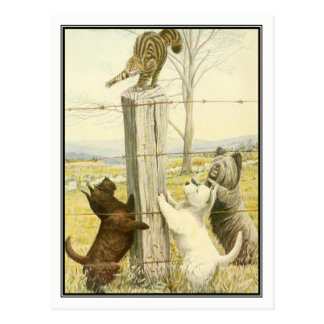 Naughty Terriers by Louis Agassiz Fuertes Postcard
