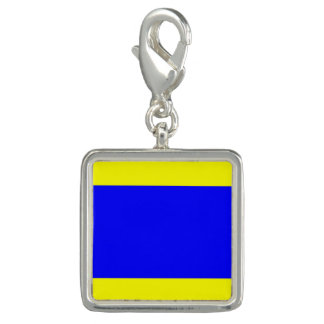 "Nautical Flag Signal Code Letter D ""Delta"" Charm"