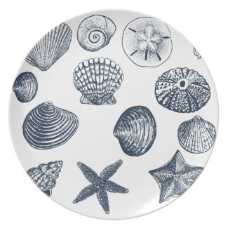 Nautical shells dinner plate