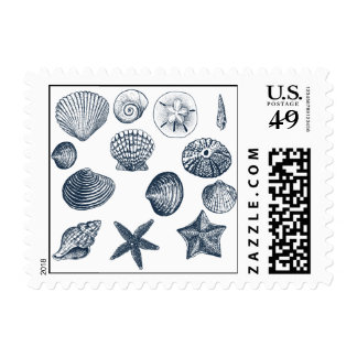 Nautical shells postage
