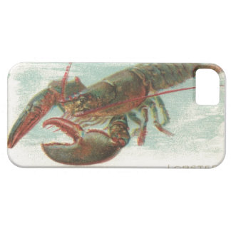 Nautical steampink vintage lobster book drawing iPhone 5 covers