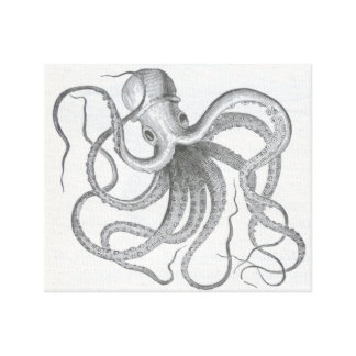 Nautical steampunk octopus vintage kraken drawing canvas print