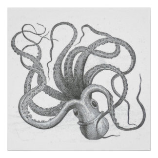 Nautical steampunk octopus vintage kraken drawing poster