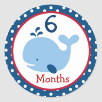 Nautical Whale Boy Monthly Milestone Stickers