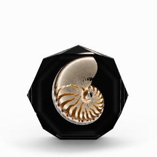 nautilus acrylic award