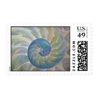Nautilus compartimentado bisecado sellos