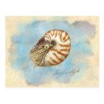 Nautilus de la historia natural postal