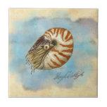 Nautilus de la historia natural tejas  ceramicas