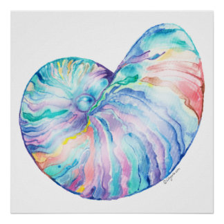 Nautilus Infinity Fine Art Print and Poster