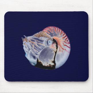 Nautilus Mousepad - blue background