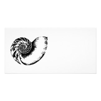 Nautilus Picture Card