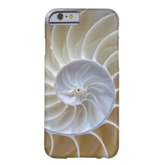 Nautilus Sea Shell Photograph Barely There iPhone 6 Case