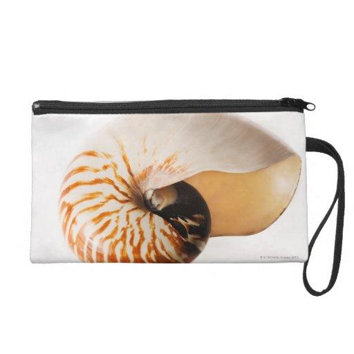 Nautilus seashell (Nautilus stenomphalus) Wristlet Purses