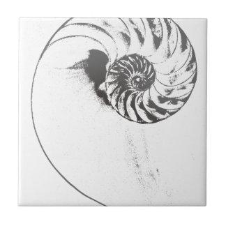 Nautilus shell 1 small square tile